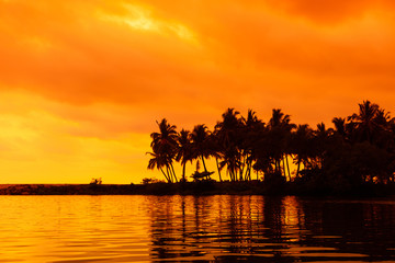 Palm trees silhouettes on tropical beach with reflection in water at sunset