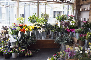 Colorful Display Of Flowers In Florists Shop
