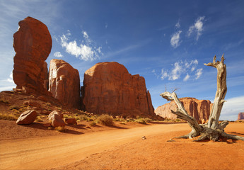 Photo sur Plexiglas Secheresse dead trunk and red rock formation in monument valley