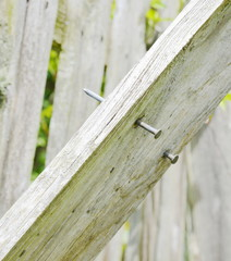 nail on the wood fence