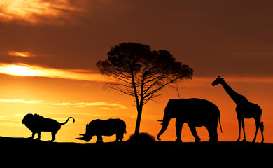 Silhouettes of African animals at sunset in the Savannah, collage