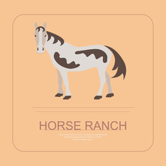 Logotype of horse ranche in flat design. Perfect organic farm products banner or flyer. Vector illustration. eps 10