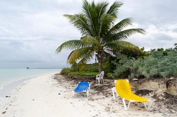 Empty beach chairs waiting for tourists in Cayo Guillermo - Ciego de Avila Province, Cuba.
