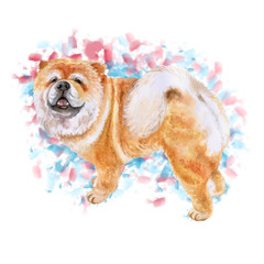 Watercolor closeup portrait of Chow chow dog isolated on colorful background. funny dog showing tongue. Hand drawn sweet home pet. Popular large breed dog posing. Greeting card design. Clip art work