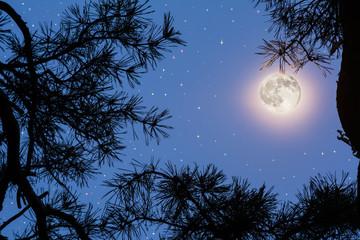 Full moon on the night sky