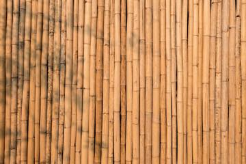 Natural yellow dry bamboo wall