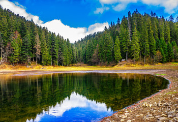crystal clear lake near the pine forest in mountains