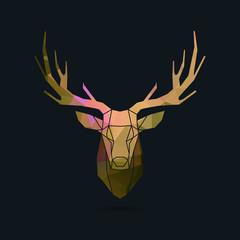 deer portrait invert frame color poly