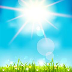 Bright summer midday