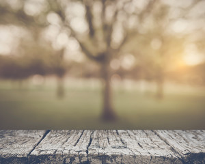 Blurred Nature Background with Vintage Style Filter