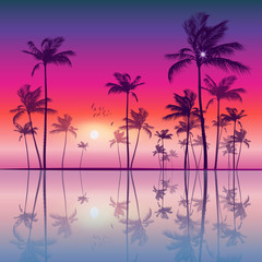 Wall Mural - Exotic tropical palm trees  at sunset or sunrise, with colorful