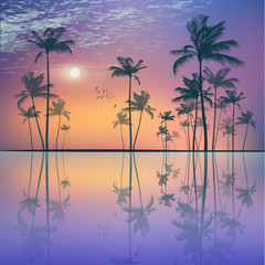 Wall Mural - Landscape with  tropical palm trees  at sunset or moonlight, wit