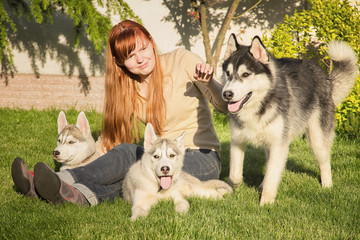 Young woman playing with the dogs. Siberian husky. Puppies.