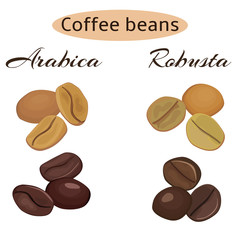 Types of coffee beans.