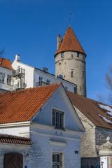 Wall Mural - Stoltingi Tower