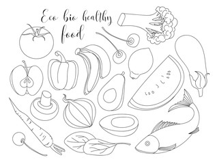 Various of hand drawn Eco bio healthy food