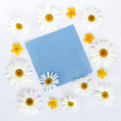 greeting blank with daisies / flat lay chamomile flowers with blue clean card for inscriptions on a wooden background top view