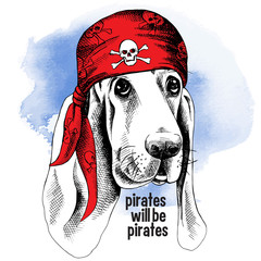 Portrait of a dog wearing a pirates bandana with the image of a skull. Vector illustration.