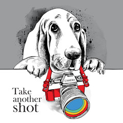 The poster with the image of the dog with the camera. Vector illustration.
