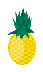 Pineapple isolated on white vector.