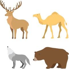 Forest animal set: deer, camel, bear, wolf