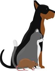 Vector group of pets - Dog, cat, rat. Vet clinic logo.