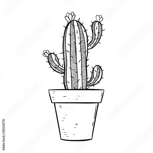 Line Drawing Cactus : Quot black and white cactus in pot with line art or sketchy