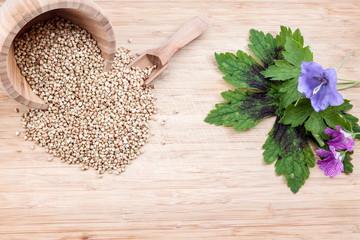 the buckwheat spice