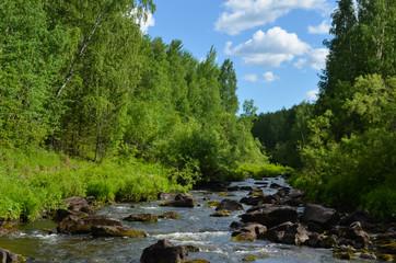 быстрая река с лесными берегами