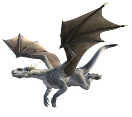 Elegant dragon isolated on white background 3d illustration