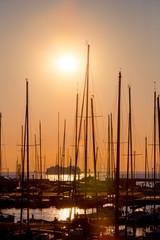 rows of boats mast