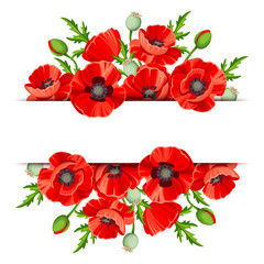 Obraz Vector background banner with red poppies. - fototapety do salonu