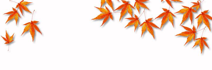 秋のバナー素材