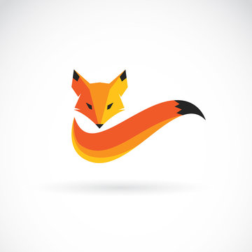 Vector of a fox design on white background. Animals.