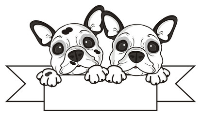 two, couple, together, ribbon, empty, clean, plate, blank, top, hold, dog, french, bulldog, breed, background, white, isolated, cartoon, puppy,  animal, muzzle, snout, paws