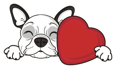 sleep, lie, dream, heart, red, hold, hug, closed, eyes, recognition, holiday, Valentine's Day, dog, french, bulldog, breed, background, white, isolated, cartoon, puppy,  animal, muzzle, snout, paws