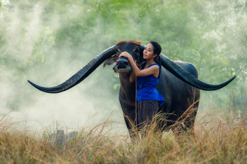 Thai young woman farmer with buffalo