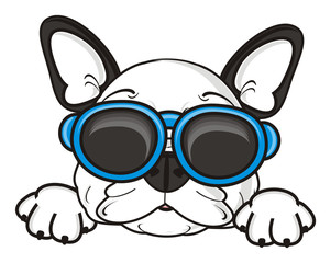 sunglasses, Rest, relaxation, dog, french, bulldog, breed, background, white, isolated, cartoon, puppy,  animal, muzzle, snout, paws