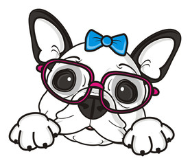 bow, blue, girl, glasses, dog, french, bulldog, breed, background, white, isolated, cartoon, puppy, muzzle, snout, paws