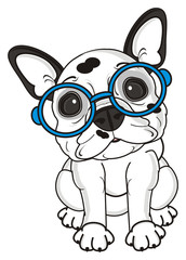 sit, look, glasses, dog, french, bulldog, breed, background, white, isolated, cartoon,