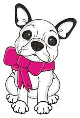 ribbon, pink, bow, girl, sit, gift, dog, french, bulldog, breed, background, white, isolated, cartoon,