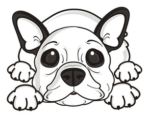 look, lie, Rest, relaxation, dog, french, bulldog, breed, background, white, isolated, cartoon,