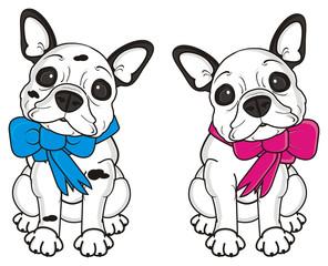 two, couple, together,  boy, girl, ribbon, bow, dog, french, bulldog, breed, background, white, isolated, cartoon,