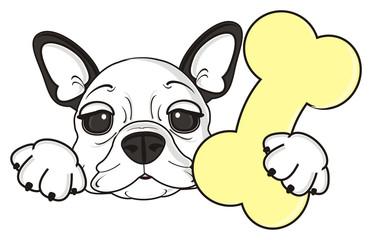 bone, treat, food, dog, french, bulldog, breed, background, white, isolated, cartoon, puppy, muzzle, snout, paws