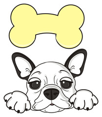 bone, treat, dog, french, bulldog, breed, background, white, isolated, cartoon, puppy, muzzle, snout, paws