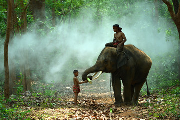 Children with Elephants and Mahout
