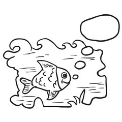 black and white fish in water