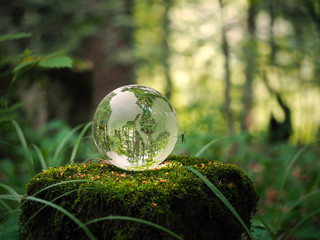 Globe in the forest. Ball on a stump with moss. Glass - a material, concepts and themes, concepts, environment, nature