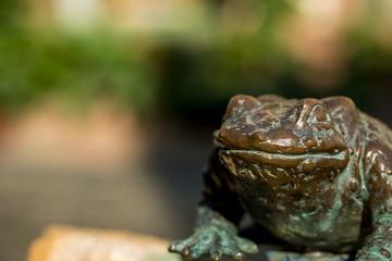 Frosch Skulptur in Oppenheim