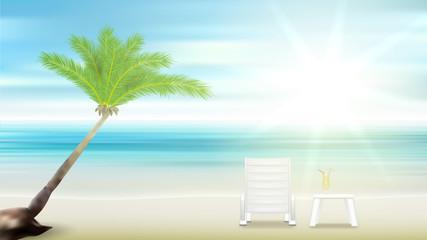 beach palm tree and sea